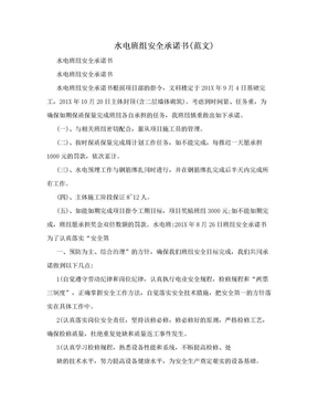 水电班组安全承诺书(范文).doc