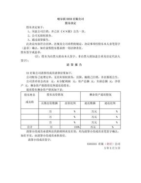 独资有限公司注销股东决定、清算报告.doc