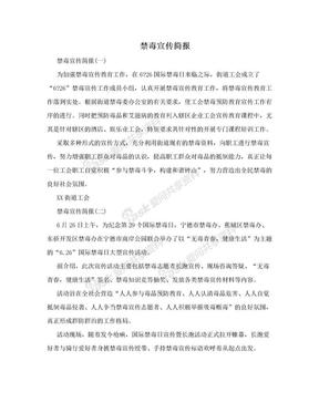 禁毒宣传简报.doc