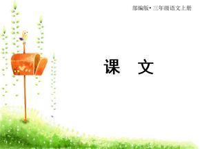 部编版三年级语文上册大青树下的小学.ppt