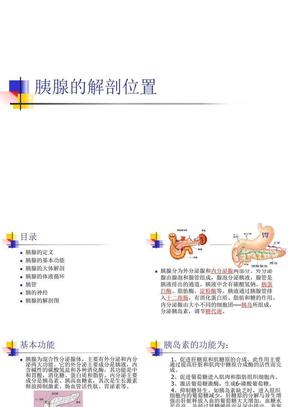 胰腺的解剖(修改版).ppt