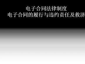 互联网 电子合同法律制度,电子合同的履行与违约责任及救济(完美精编).ppt