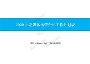 2020年新媒体运营全年工作计划表.doc
