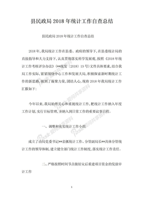 县民政局2018年统计工作自查总结.docx
