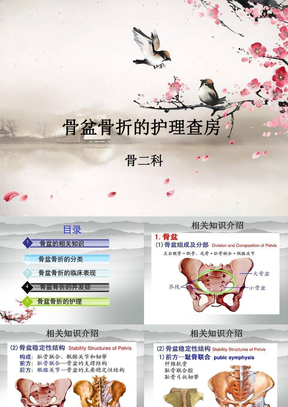 骨科骨盆骨折病人的护理查房.ppt