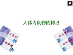(人教版)高中生物必修二PPT演示课件.ppt