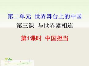 【人教部编版】九年级下册《道德与法治》-3.1中国担当(38张幻灯片).ppt