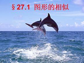 27.1图形的相似(公开课课件).ppt