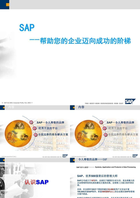 SAP介绍(完整详细版).ppt