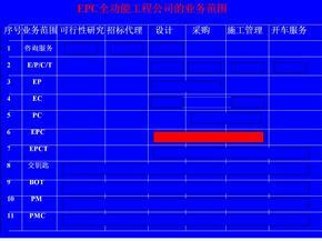 工程公司矩阵式组织结构图.pptx