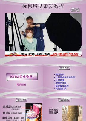 标榜造型染发精编版课件.ppt
