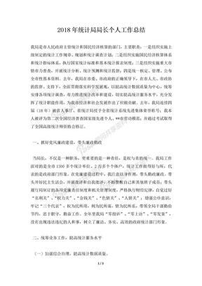 2018年统计局局长个人工作总结.docx