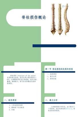 脊柱损伤概论.ppt