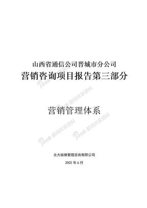 营销咨询项目报告( 151页).doc