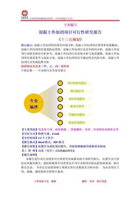 混凝土外加剂项目可行性研究报告.doc