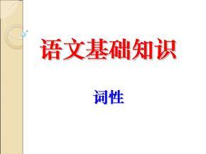 初中语文基础知识-词性练习题.ppt