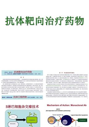 抗体靶向治疗药物PPT课件(完整版).ppt