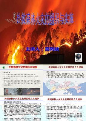 森林灭火作战的组织与实施(修改版).ppt