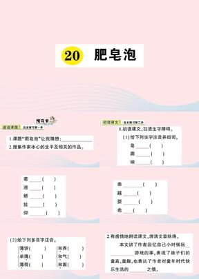 2019三年级语文下册第六单元肥皂泡习题课件.pptx