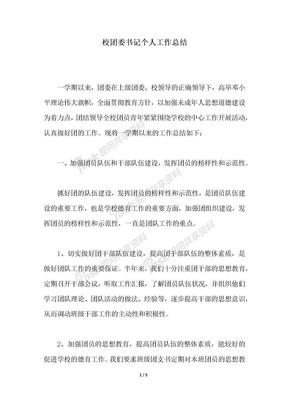 2018年校团委书记个人工作总结.docx