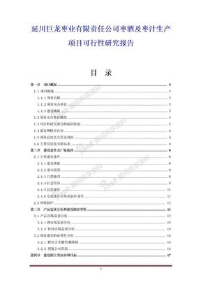 延川巨龙枣业有限责任公司枣酒及枣汁生产项目可行性研究报告.doc