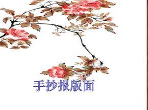 手抄报版面设计.pptx