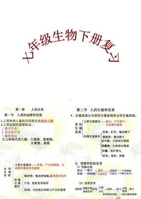 人教版七年级下册生物总复习课件PPT演示课件.ppt