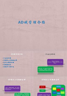 AD域管理介绍.pptx