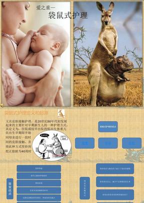 袋鼠式护理(最终稿)精编PPT课件.pptx.pptx