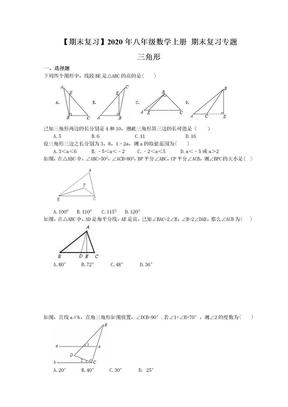 【期末复习】2020年八年级数学上册 期末复习专题 三角形(含答案).doc
