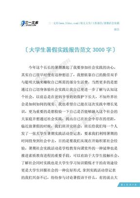 大学生暑假实践报告范文3000字.docx