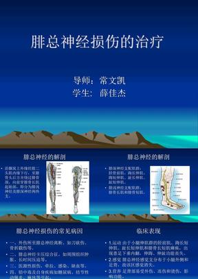 腓总神经损伤的治疗(修改版).ppt