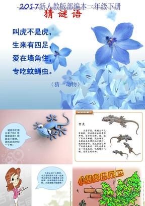 2018新人教版部编本一年级下册《小壁虎借尾巴》ppt.ppt