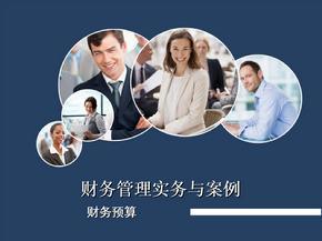 财务管理实务与案例-财务预算.ppt