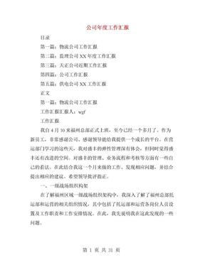 公司年度工作汇报(多篇范文).doc