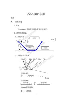 CGG用户手册.doc