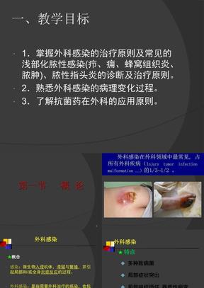 外科感染概述皮肤软组织的急性化脓性感染.ppt