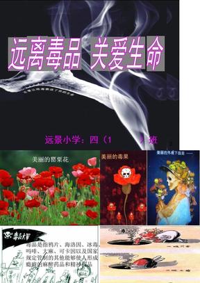 禁毒主题班会PPT四(1).ppt