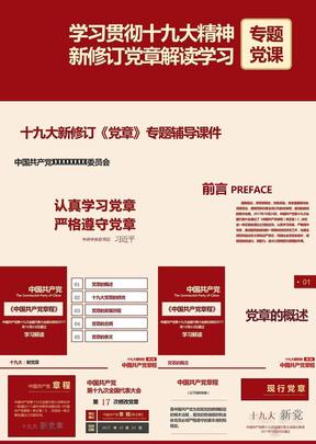 十九次大新党章学习党课课件.pptx