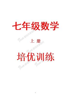 人教版七年级数学上册培优资料精华.doc