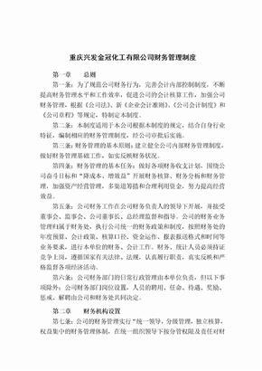 XX公司财务管理制度大全.doc