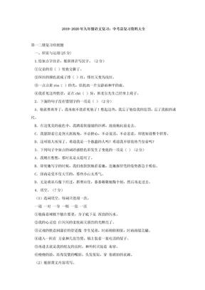2019-2020年九年级语文复习:中考总复习资料大全.doc