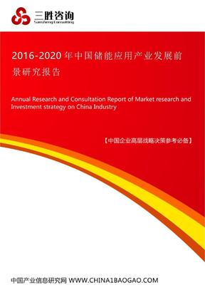 中国储能应用产业的发展前景研究报告.docx