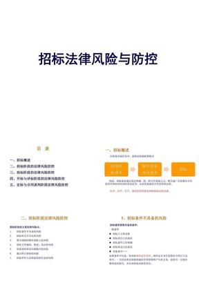 招标投标法律风险及防控实务.pptx