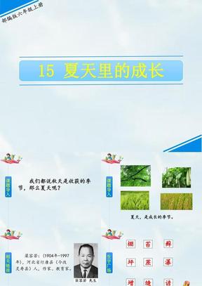 最新部编版五年级语文上册课件《15 夏天里的成长》.ppt