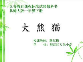 大熊猫精品课件9.PPT