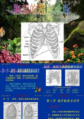 超声诊断学-14胸部.ppt.ppt