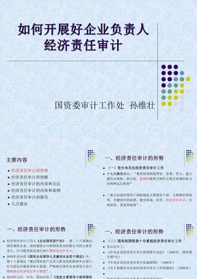 201112065653如何开展好企业负责人经济责任审计.ppt