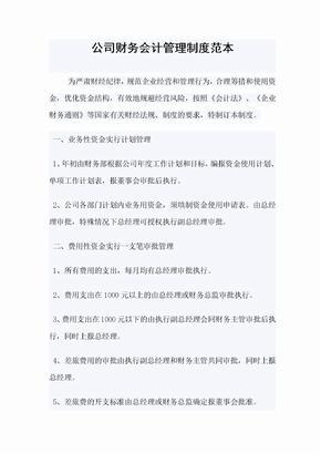 公司财务会计管理制度范本.doc