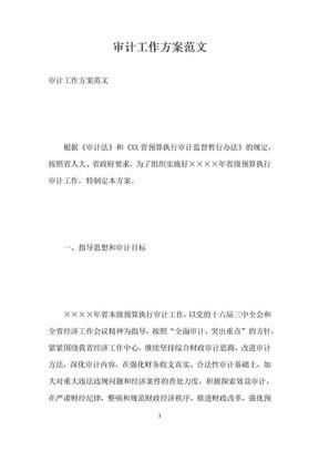 审计工作方案范文.docx